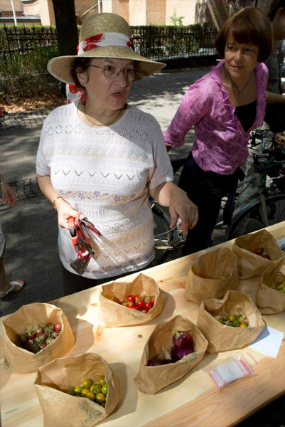 piknik-24-avgust-13-05