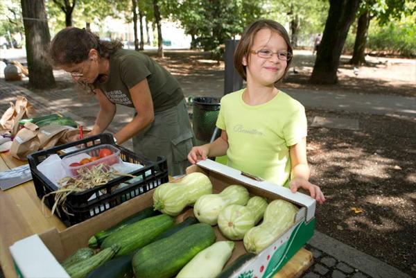 piknik-24-avgust-13-11