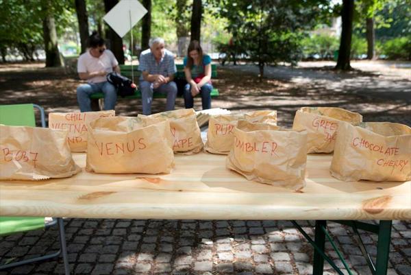 piknik-24-avgust-13-15