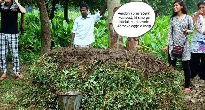Tako sem se v Indiji naučila izdelati kompost