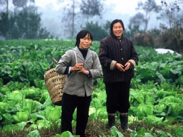Visoke grede – še en izum Kitajcev