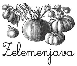 zelemenjava logo