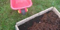 Vrtnarjenje z najmlajšimi